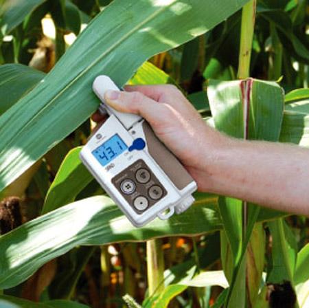 Medir la clorofila es un indicador de la salud de las plantas.