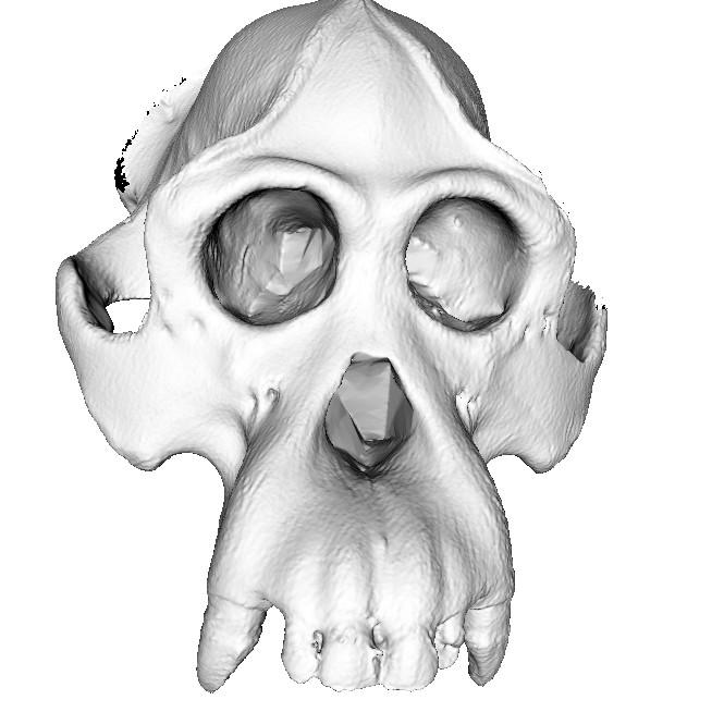 Digitalización 3D, escáner 3D.
