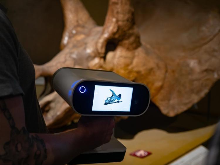 Escaneo 3D de cráneo de Triceratops con el escáner Artec Leo. AQ Instruments.